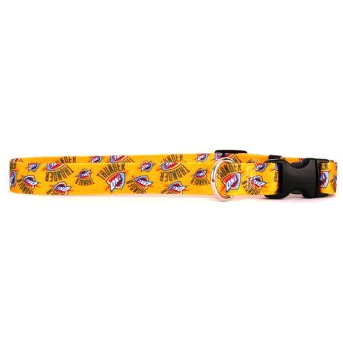 Yellow Dog Design Oklahoma City 10-Feet to 14-Feet Thunder Collar, Small