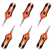 GROWNEER 6 Packs Pruning Shears Gardening Hand Pruning Snips with Straight Stainless Steel Precision Blades