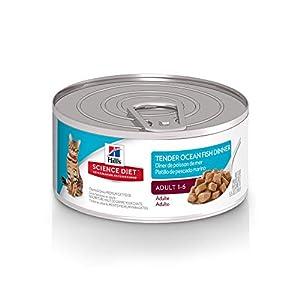 Hill's Science Diet Wet Cat Food, Adult, Tender Ocean Fish Dinner, 5.5 oz, 24-pack 53