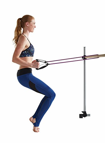 Gaiam Beginner's Barre Kit