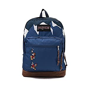 JanSport Unisex Disney Right Pack Expressions Alpine Take A Hike Backpack