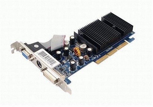 256 Mb Graphics (XFX PVT44AWANG GeForce 6200 256MB GDDR2 AGP 4X/8X Video Card)