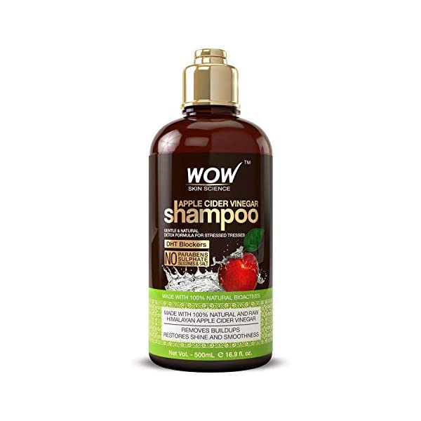 WOW Apple Cider Vinegar Shampoo – Reduce Dandruff, Frizz, Split Ends- DHT Blockers For Hair Loss – Clean Scalp & Boost Gloss, Shine – Paraben, Sulfate Free – All Hair Types, Adults & Children – 500 mL