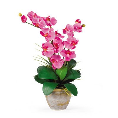 Nearly Natural Double Stem Phalaenopsis Silk Orchid Arrangement