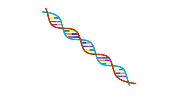 Genes Humanos: Amazon.es: Appstore para Android
