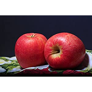 Juvale Fake Fruit Artificial Apples 2.5 Inches (Set of 6) 2