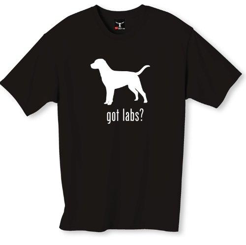 Got Lab - 4