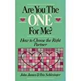 Are You the One for Me?, John James and Ibis Schlesinger, 0201145812