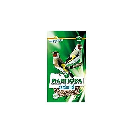 Manitoba Mixtura para jilgueros cardueldi 15 KG + Chia ...