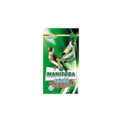 Manitoba Mixtura para jilgueros cardueldi 15 KG + Chia: Amazon.es ...