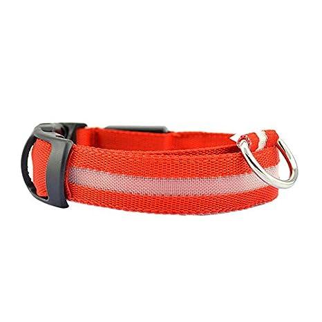CAOQAO - Collar Luminoso de Nailon para Perro y Animal de compañía ...
