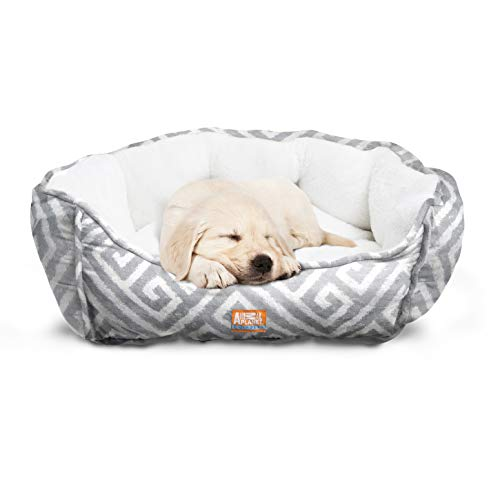 "Animal Planet Round Plush Micro Suede & Sherpa Bolster Pet Bed for Dogs & Cats, Puppies, and Small & Toy Breeds; Cuddly and Warm for Burrowing and Snuggling, Easy-to-Clean 24""x (Medium Round Pet Bed)"