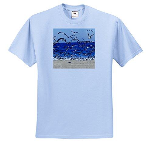 Danita Delimont - Birds - Sea Gull birds on American Beach, Jacksonville, FL - US10 GJO0229 - Greg Johnston - T-Shirts - Adult Light-Blue-T-Shirt Small (ts_89151_50)