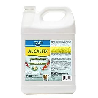 API POND ALGAEFIX Algae Control 1-Gallon Bottle