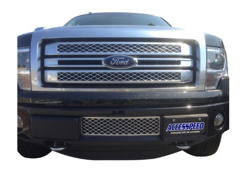 Ford F150 Grille OEM Style Durable ABS Plastic Lower Bumper (Ford F150 Bumper Insert)