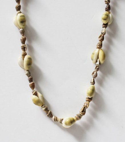 Deluxe Seashell Leis with Cowrie Shell