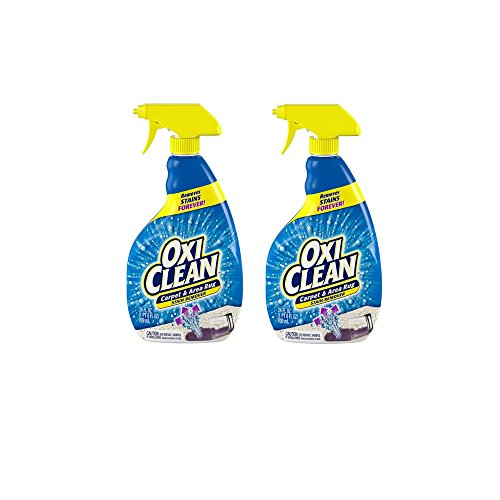 OxiClean Carpet and Area Rug Stain Remover Spray, 24 Ounce 2 Pack (Best Carpet Cleaner Spray)