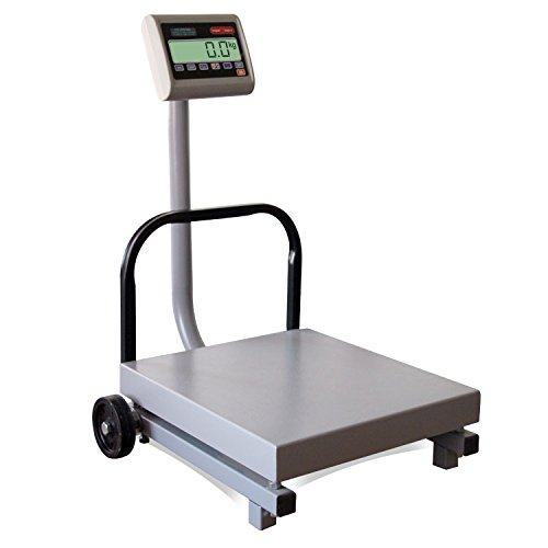 High Capacity Crane Scale - TORREY FS500/1000 Digital Receiving Scale, Rechargeable Battery, Robust Steel Construction, Toggles between kg and pounds, 500 kg/1000 lb, Gray