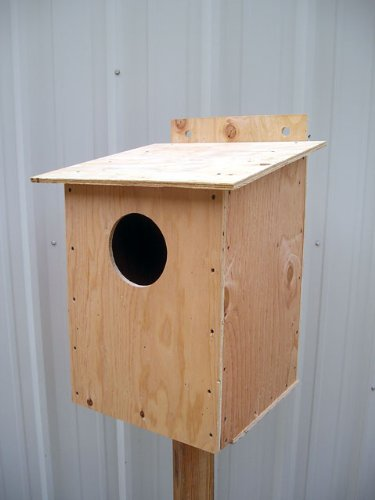 Barn Owl Nesting Box by MHB (Image #2)