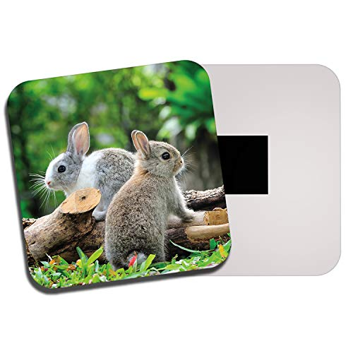 DestinationVinyl Cute Bunnies Fridge Magnet - Bunny Rabbit Pet Animal Kids Cool Fun Gift #8284
