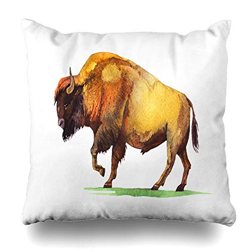 Ahawoso Decorative Throw Pillow Cover Bison Brown Painting Watercolor Hand Buffalo Nature Bull Green West Old Wild Aged Design Zippered Design 16