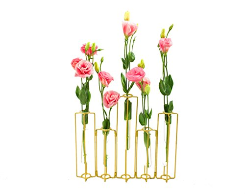 ST.LORIAN Decorative Glass Flower Vase Metal Stand,Hinged Bud Test Tubes Vases Display Set of 5,for Home Wedding Centerpieces Décor (Test Tube Rack Metal)