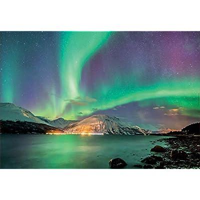 Educa Borras 1000 Aurora Boreale Puzzle 17967