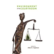 Environment in the Courtroom
