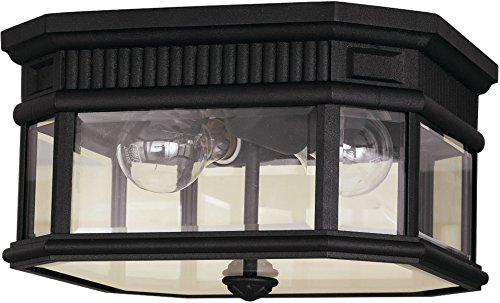 "Feiss OL5413BK Cotswold Lane Outdoor Flush Mount Ceiling Lighting, Black, 2-Light (12""W x 7""H) 80watts from Feiss"