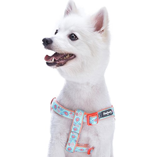 Blueberry Pet New 5 Colors Soft & Comfy Step-in Paisley Flower Print Dog Harness, Chest Girth 26 - 39, Pastel Blue, Large, Adjustable Harnesses for Dogs