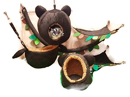 6 Pieces Cute KPS Jungle Bear Style Sugar Glider Hamster Squirrel Chinchillas Small Pet Cage Set Forest Bear Pattern Dark Brown Color Get Free 1 Small Pet Treats by Polar ()