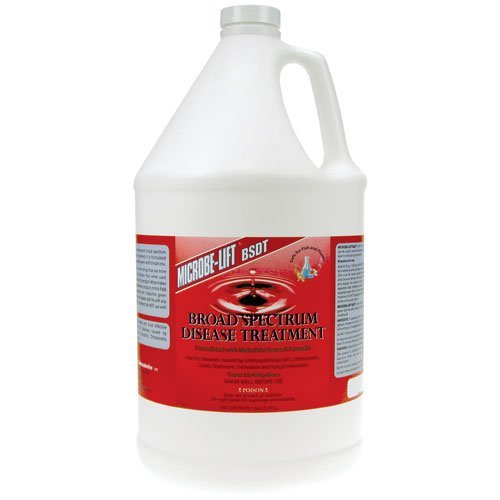 eco-labs-bsdtgal-broad-spectrum-disease-treatment-gallon