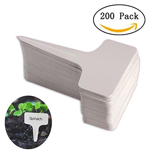200pcs T-type PVC Waterproof T Tag Plant Markers - Premium Nursery Garden Labels - Eco Friendly - Greyish White (6 x 10cm) by Kalolary