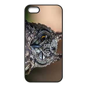 Night Owl Hight Quality Plastic Case for Iphone 5s