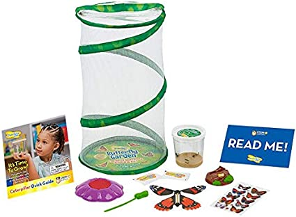 Insect Lore Butterfly Mini Garden Gift Set with Live Cup of Caterpillars – Life Science & STEM Education