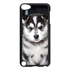 iPod Touch 5 case,Husky,Poodle,Beagle,Puppy Dog Hard Plastic Case for iPod Touch 5/5th Generation,iPod Touch 5th Generation Case,apple iPod Touch 5 cover Skin protector(Black/White)