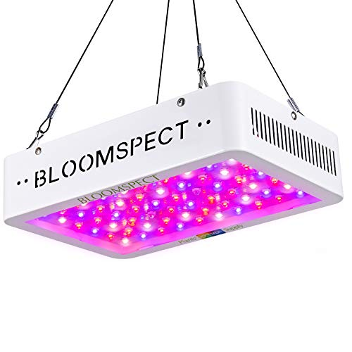 BLOOMSPECT 600W LED Grow
