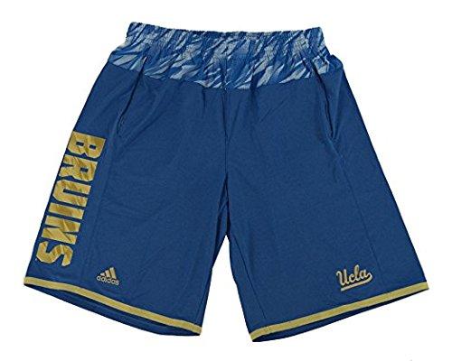 adidas Blue UCLA Bruins Players Sideline Mens Shorts
