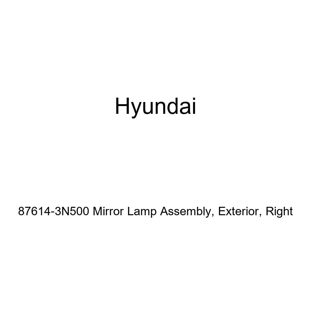 Right Exterior Genuine Hyundai 87614-3N500 Mirror Lamp Assembly
