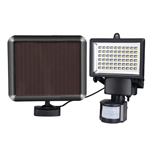 Led Light Rays in US - 8