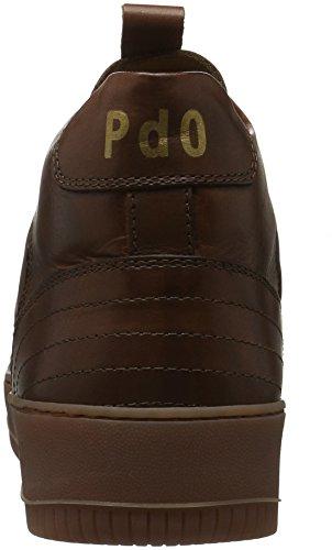 Tabacco Pantofola Ginnastica D'oro Scarpe 43 Uomo Suprema Alte Da Marrone PWzPrH4fn