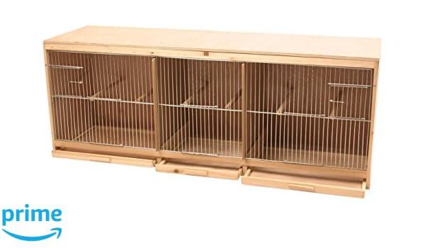 DUVO + Kit Jaula para pájaro Fabricada en Madera con 3 Partes: Amazon.es: Productos para mascotas