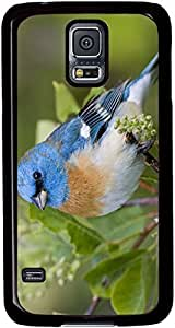 Beautiful-Blue-Bird Cases for Samsung Galaxy S5 I9600 with Black sides