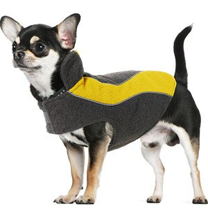 Kakadu Pet Explorer Fleece Reflective Dog Coat, 10″, Sun (Yellow), My Pet Supplies