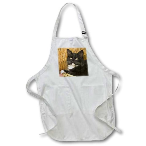 White 3dRose apr/_84111/_1 Short-Haired Kitten on Hamper Lid Full Length Cats NA02 MPR0102 Maresa Pryor 22-Inch Width by 30-Inch Length Apron with Pockets