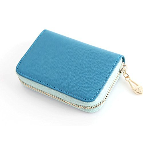 Leather Accordion Zipper Name Card Wallet Useful Credit Card Wallets Small Purse (Blue)