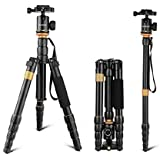 "Andoer DSLR Camera Tripod,52inch/ 132cm Aluminum Tripod Monopod with 360° Ball Head and 1/4"" Quick Release Plate for Canon Nikon Sony"