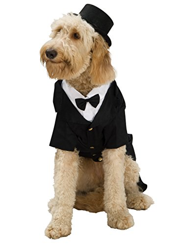 Rubie's Dapper Dog Pet Costume, Large -