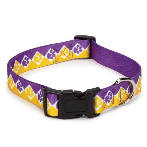 Casual Canine Polyester Collegiate Paws Dog Collar, 6-10-Inch, Purple/Yellow, My Pet Supplies