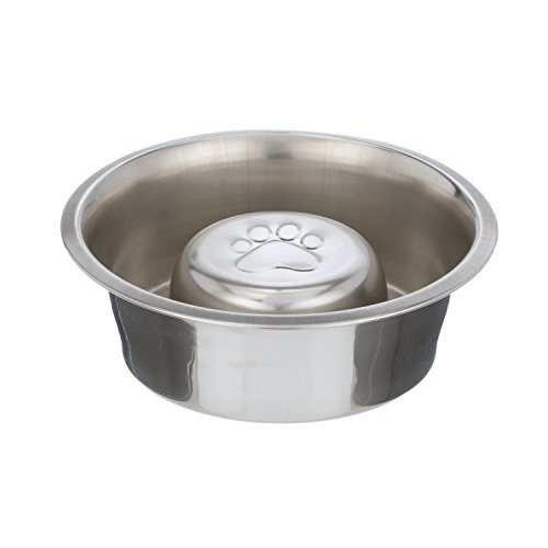 slow feed dog bowl stainless steel buyer's guide